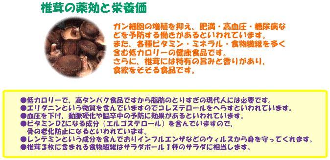 生しいたけ_shiitake_03