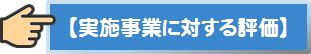 button_実施事業に対する評価