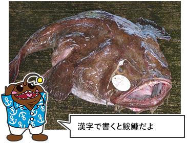 あんこう鍋イメージ1